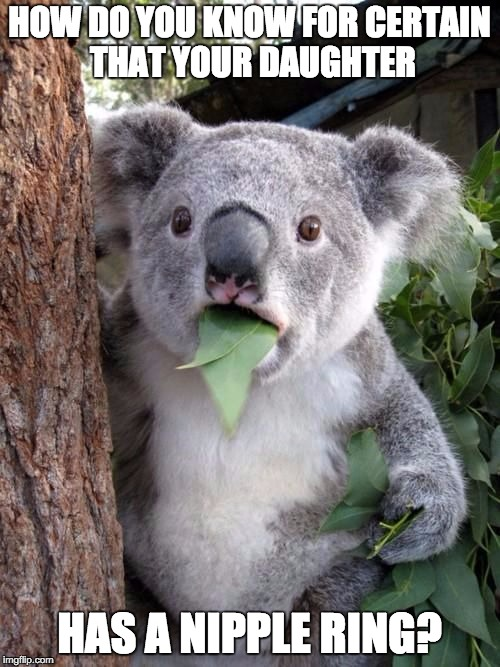WTF Koala | HOW DO YOU KNOW FOR CERTAIN THAT YOUR DAUGHTER HAS A NIPPLE RING? | image tagged in wtf koala | made w/ Imgflip meme maker