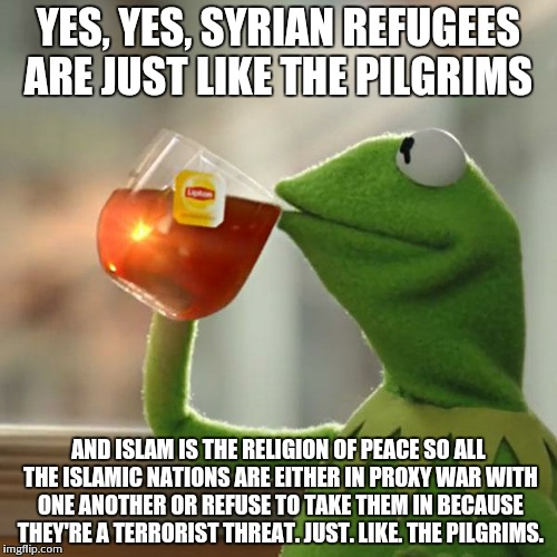 But Thats None Of My Business | YES, YES, SYRIAN REFUGEES ARE JUST LIKE THE PILGRIMS AND ISLAM IS THE RELIGION OF PEACE SO ALL THE ISLAMIC NATIONS ARE EITHER IN PROXY WAR W | image tagged in memes,but thats none of my business,kermit the frog | made w/ Imgflip meme maker