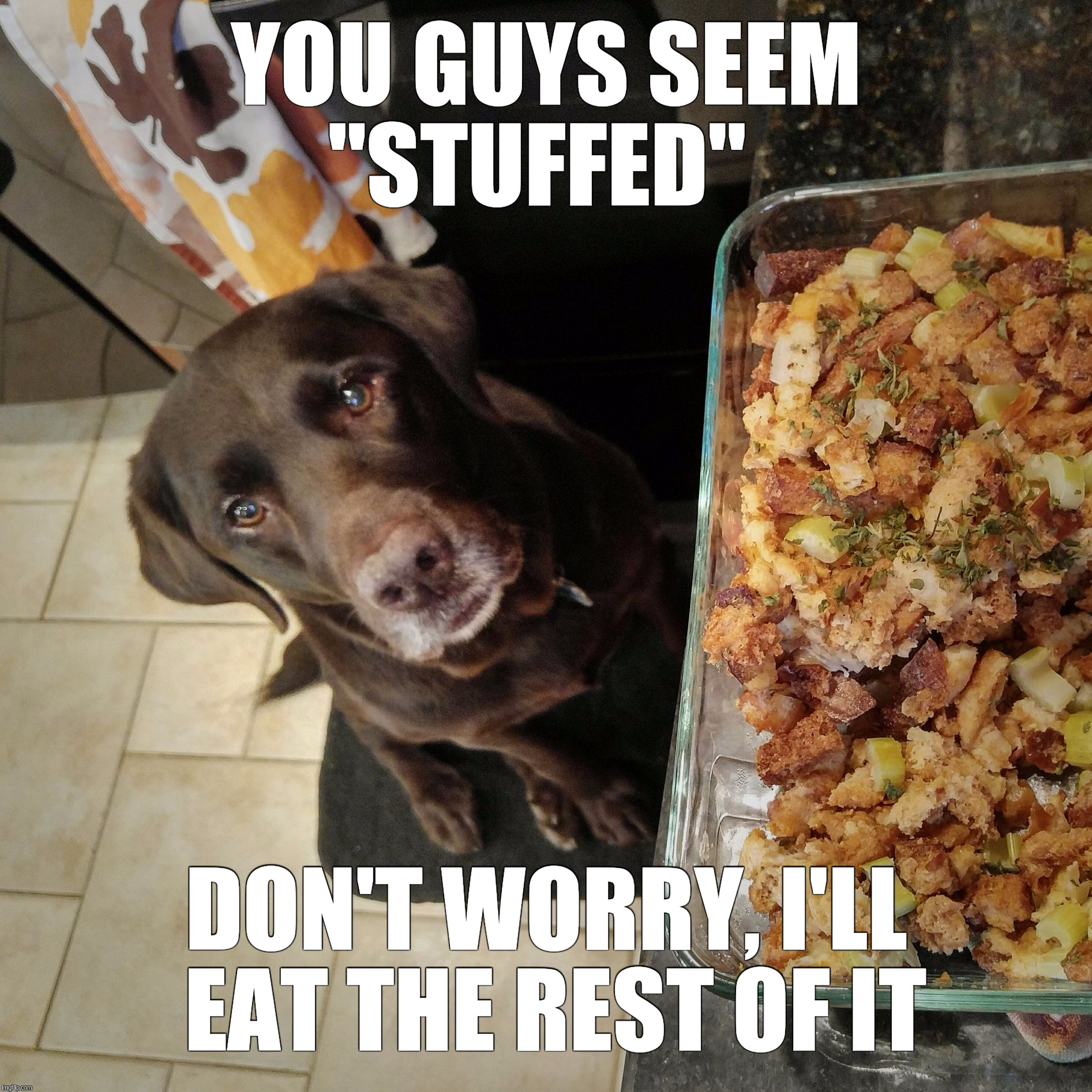 "YOU GUYS SEEM ""STUFFED"" DON'T WORRY, I'LL EAT THE REST OF IT 