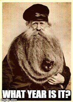 beard cat | WHAT YEAR IS IT? | image tagged in beard cat | made w/ Imgflip meme maker