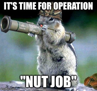 "Bazooka Squirrel | IT'S TIME FOR OPERATION ""NUT JOB"" 