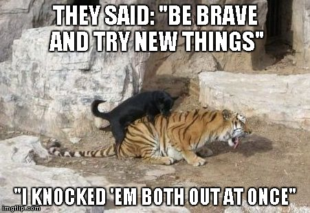 "Never be afraid to try new things | THEY SAID: ""BE BRAVE AND TRY NEW THINGS"" ""I KNOCKED 'EM BOTH OUT AT ONCE"" 