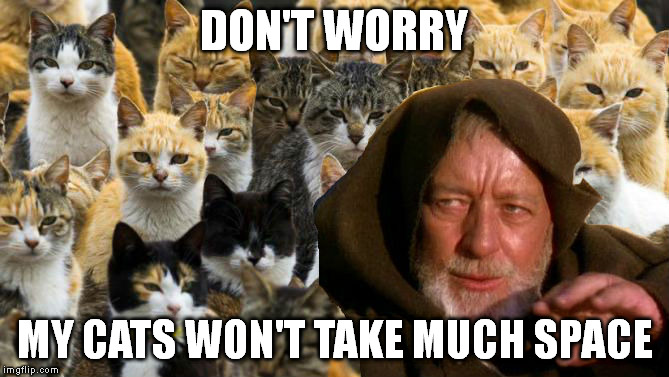 Obi Wan Catnobi | DON'T WORRY MY CATS WON'T TAKE MUCH SPACE | image tagged in obi wan catnobi | made w/ Imgflip meme maker