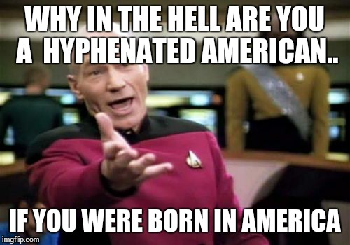 Picard Wtf Meme | WHY IN THE HELL ARE YOU A  HYPHENATED AMERICAN.. IF YOU WERE BORN IN AMERICA | image tagged in memes,picard wtf | made w/ Imgflip meme maker