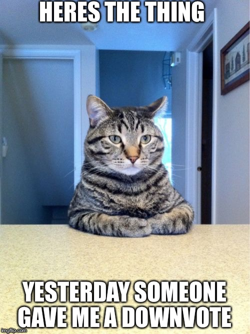 Take A Seat Cat Meme | HERES THE THING YESTERDAY SOMEONE GAVE ME A DOWNVOTE | image tagged in memes,take a seat cat | made w/ Imgflip meme maker