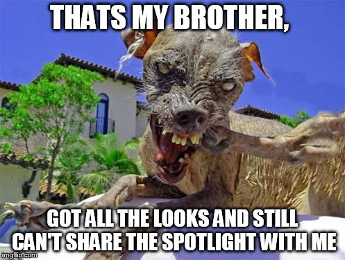 THATS MY BROTHER, GOT ALL THE LOOKS AND STILL CAN'T SHARE THE SPOTLIGHT WITH ME | made w/ Imgflip meme maker