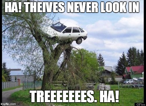 Secure Parking Meme | HA! THEIVES NEVER LOOK IN TREEEEEEES. HA! | image tagged in memes,secure parking | made w/ Imgflip meme maker
