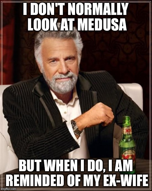 The Most Interesting Man In The World Meme | I DON'T NORMALLY LOOK AT MEDUSA BUT WHEN I DO, I AM REMINDED OF MY EX-WIFE | image tagged in memes,the most interesting man in the world | made w/ Imgflip meme maker