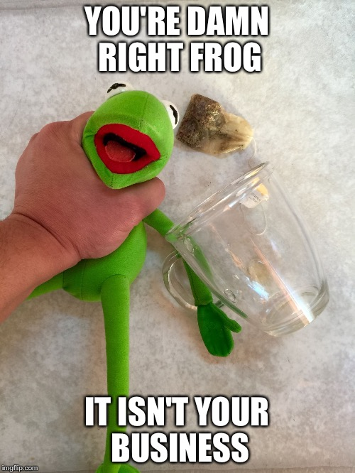 Mind Your Own Businesd | YOU'RE DAMN RIGHT FROG IT ISN'T YOUR BUSINESS | image tagged in mind your own businesd | made w/ Imgflip meme maker