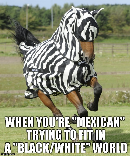 "Can't we all just get along? | WHEN YOU'RE ""MEXICAN"" TRYING TO FIT IN A ""BLACK/WHITE"" WORLD 