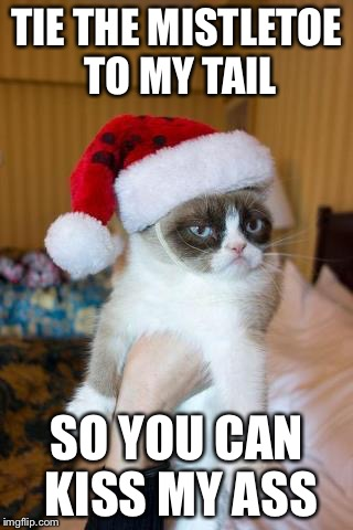 Grumpy Cat Christmas Meme | TIE THE MISTLETOE TO MY TAIL SO YOU CAN KISS MY ASS | image tagged in memes,grumpy cat christmas,grumpy cat | made w/ Imgflip meme maker
