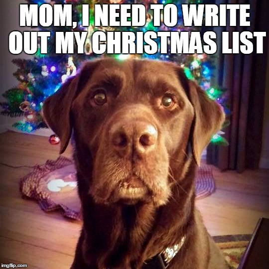I need to write my list for Santa | MOM, I NEED TO WRITE OUT MY CHRISTMAS LIST | image tagged in chuckie the chocolate lab,christmas,chocolate lab,labrador,funny dogs,christmas tree | made w/ Imgflip meme maker