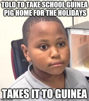 Minor Mistake Marvin Meme | TOLD TO TAKE SCHOOL GUINEA PIG HOME FOR THE HOLIDAYS TAKES IT TO GUINEA | image tagged in memes,minor mistake marvin,guinea pig,school | made w/ Imgflip meme maker