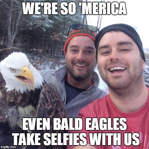 uyg5a bald eagle imgflip