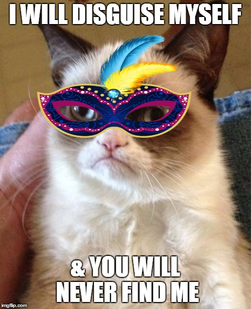 Grumpy Cat Meme | I WILL DISGUISE MYSELF & YOU WILL NEVER FIND ME | image tagged in memes,grumpy cat | made w/ Imgflip meme maker