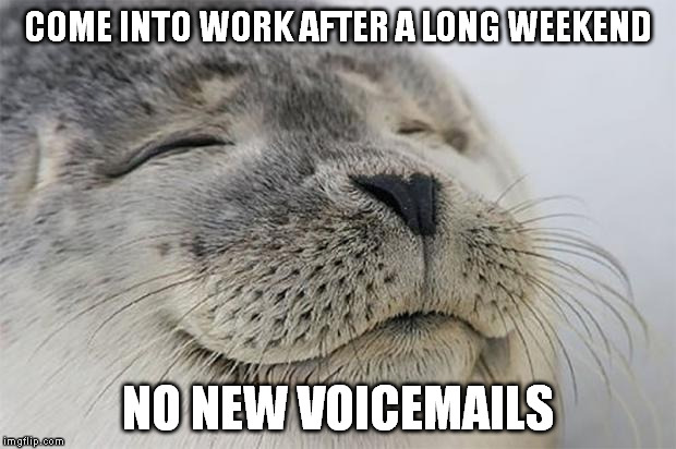 Satisfied Seal Meme | COME INTO WORK AFTER A LONG WEEKEND NO NEW VOICEMAILS | image tagged in memes,satisfied seal,AdviceAnimals | made w/ Imgflip meme maker