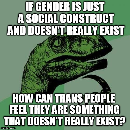 The absurdity of gender identity theory  | IF GENDER IS JUST A SOCIAL CONSTRUCT AND DOESN'T REALLY EXIST HOW CAN TRANS PEOPLE FEEL THEY ARE SOMETHING THAT DOESN'T REALLY EXIST? | image tagged in memes,philosoraptor,transgender,gender identity,liberals | made w/ Imgflip meme maker