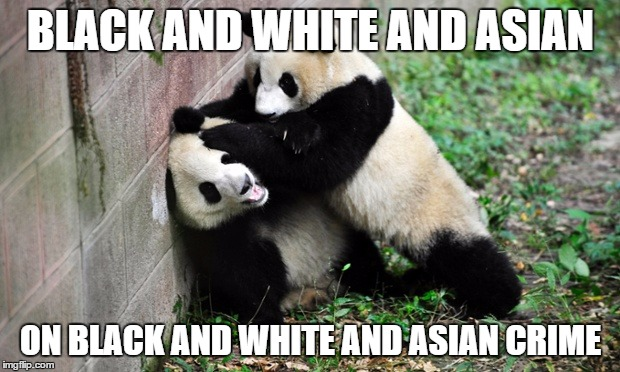 panda fight | BLACK AND WHITE AND ASIAN ON BLACK AND WHITE AND ASIAN CRIME | image tagged in panda fight | made w/ Imgflip meme maker