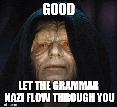 emperor  | GOOD LET THE GRAMMAR NAZI FLOW THROUGH YOU | image tagged in emperor  | made w/ Imgflip meme maker