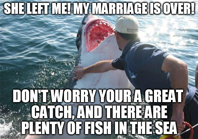 Shark soother imgflip for Plenty of fish in the sea meme