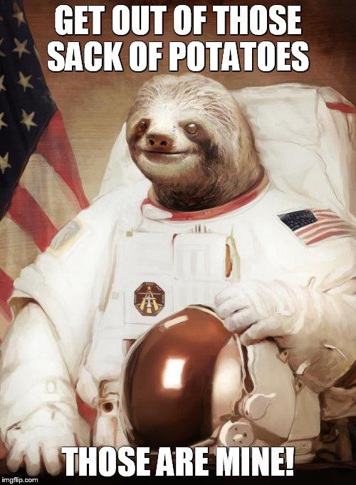 Astronaut Sloth - Imgflip