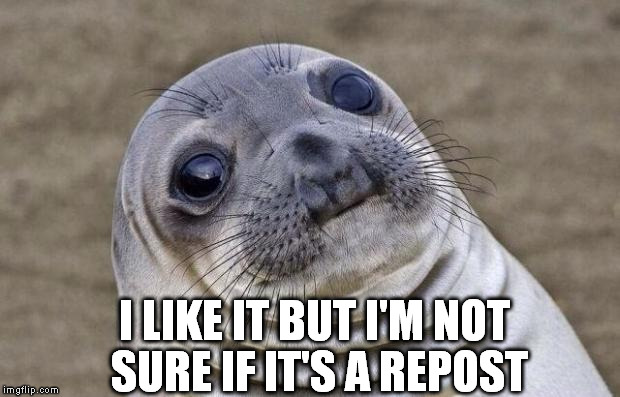 Awkward Moment Sealion Meme | I LIKE IT BUT I'M NOT SURE IF IT'S A REPOST | image tagged in memes,awkward moment sealion | made w/ Imgflip meme maker