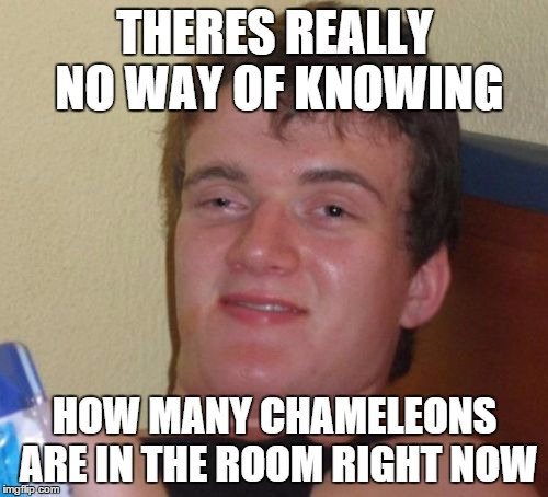 10 Guy Meme | THERES REALLY NO WAY OF KNOWING HOW MANY CHAMELEONS ARE IN THE ROOM RIGHT NOW | image tagged in memes,10 guy | made w/ Imgflip meme maker