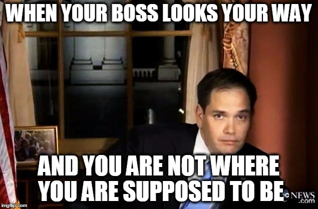 Your Boss Sees you | WHEN YOUR BOSS LOOKS YOUR WAY AND YOU ARE NOT WHERE YOU ARE SUPPOSED TO BE | image tagged in meme,funny,rubio,work | made w/ Imgflip meme maker