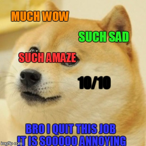 Doge Meme | MUCH WOW SUCH SAD 10/10 SUCH AMAZE BRO I QUIT THIS JOB IT IS SOOOOO ANNOYING | image tagged in memes,doge | made w/ Imgflip meme maker