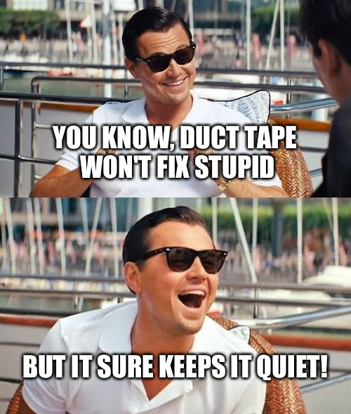 Leonardo Dicaprio Wolf Of Wall Street Meme | YOU KNOW, DUCT TAPE WON'T FIX STUPID BUT IT SURE KEEPS IT QUIET! | image tagged in memes,leonardo dicaprio wolf of wall street | made w/ Imgflip meme maker