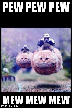 flying cat stormtrooper | PEW PEW PEW MEW MEW MEW | image tagged in flying cat stormtrooper | made w/ Imgflip meme maker