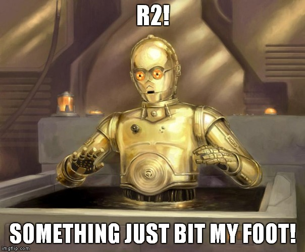 R2! SOMETHING JUST BIT MY FOOT! | made w/ Imgflip meme maker