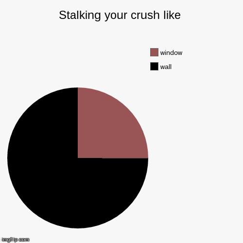 Search Stalker Meme Memes on me.me  |Stalking Your Crush Memes