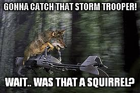 GONNA CATCH THAT STORM TROOPER! WAIT.. WAS THAT A SQUIRREL? | made w/ Imgflip meme maker