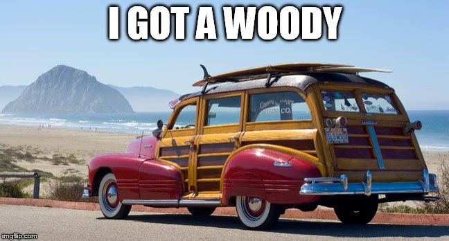 woody | I GOT A WOODY | image tagged in woody,classic | made w/ Imgflip meme maker