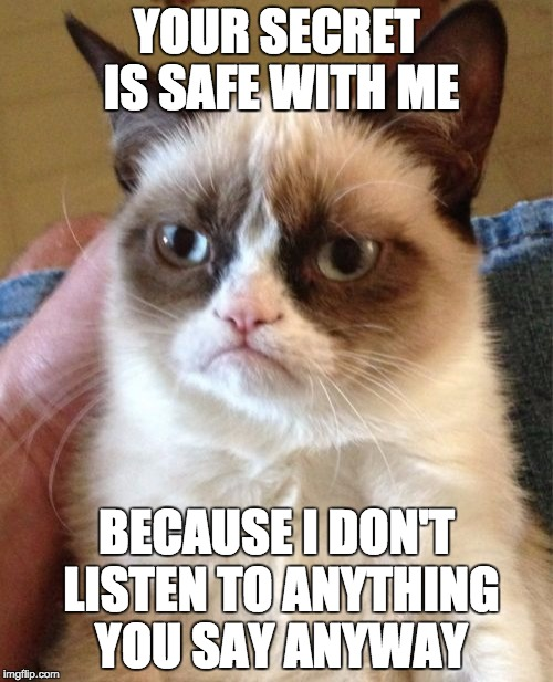 Grumpy Cat Meme | YOUR SECRET IS SAFE WITH ME BECAUSE I DON'T LISTEN TO ANYTHING YOU SAY ANYWAY | image tagged in memes,grumpy cat | made w/ Imgflip meme maker