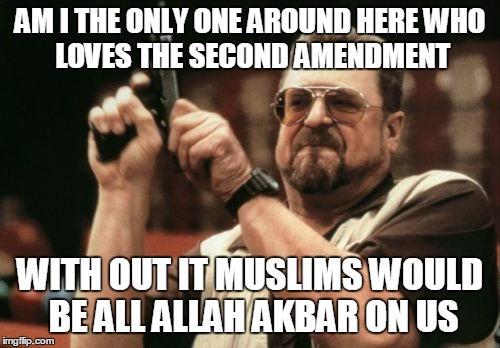 Am I The Only One Around Here | AM I THE ONLY ONE AROUND HERE WHO LOVES THE SECOND AMENDMENT WITH OUT IT MUSLIMS WOULD BE ALL ALLAH AKBAR ON US | image tagged in memes,am i the only one around here | made w/ Imgflip meme maker