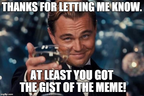 Leonardo Dicaprio Cheers Meme | THANKS FOR LETTING ME KNOW. AT LEAST YOU GOT THE GIST OF THE MEME! | image tagged in memes,leonardo dicaprio cheers | made w/ Imgflip meme maker