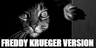 cat black and white | FREDDY KRUEGER VERSION | image tagged in cat black and white | made w/ Imgflip meme maker