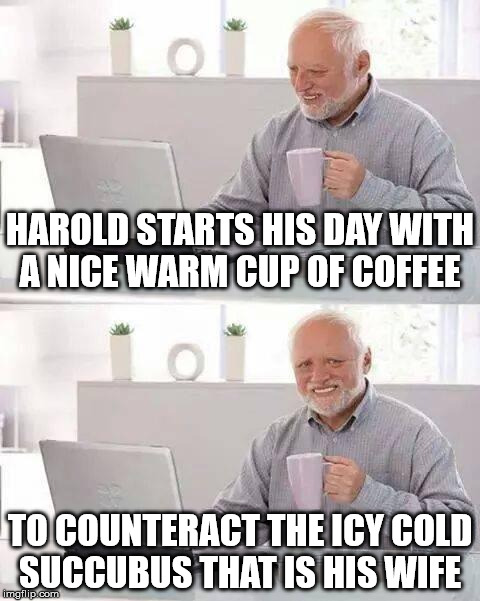 Hide the Pain Harold Meme | HAROLD STARTS HIS DAY WITH A NICE WARM CUP OF COFFEE TO COUNTERACT THE ICY COLD SUCCUBUS THAT IS HIS WIFE | image tagged in hide the pain harold | made w/ Imgflip meme maker