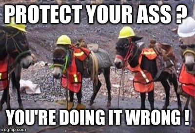 Save the donkey | PROTECT YOUR ASS ? YOU'RE DOING IT WRONG ! | image tagged in farm animals,funny | made w/ Imgflip meme maker