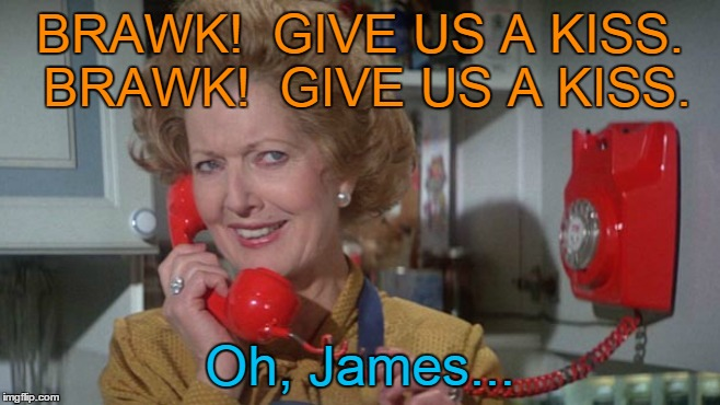 BRAWK!  GIVE US A KISS. BRAWK!  GIVE US A KISS. Oh, James... | made w/ Imgflip meme maker