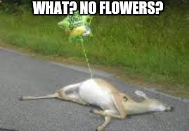 WHAT? NO FLOWERS? | made w/ Imgflip meme maker