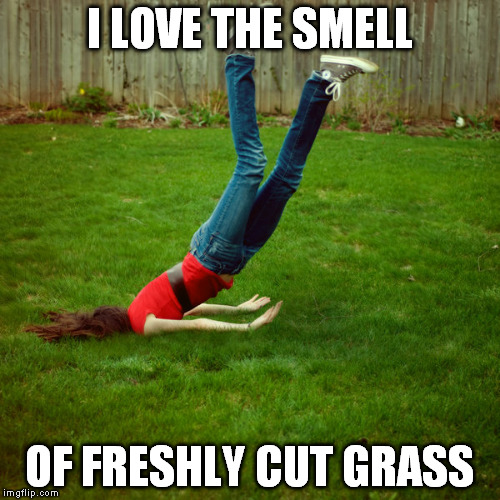 faceplant | I LOVE THE SMELL OF FRESHLY CUT GRASS | image tagged in faceplant | made w/ Imgflip meme maker