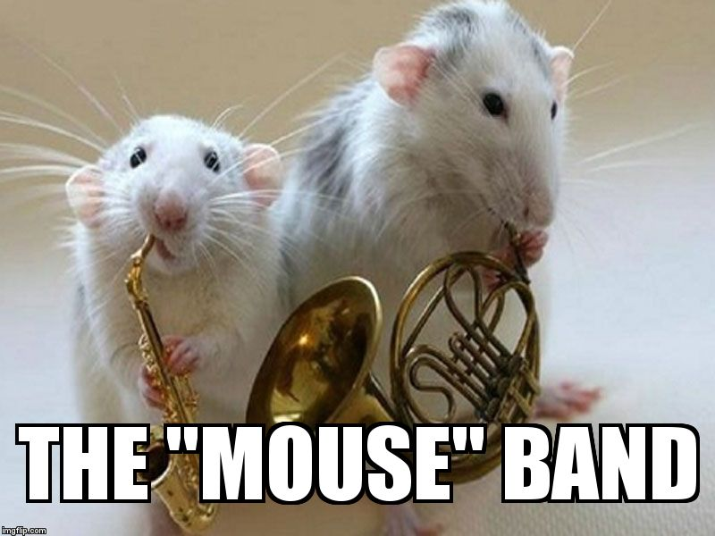 "musical animals | THE ""MOUSE"" BAND 