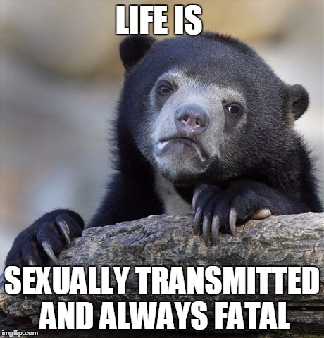 Confession Bear Meme | LIFE IS SEXUALLY TRANSMITTED AND ALWAYS FATAL | image tagged in memes,confession bear | made w/ Imgflip meme maker