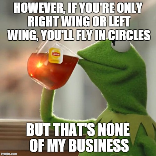 But Thats None Of My Business Meme | HOWEVER, IF YOU'RE ONLY RIGHT WING OR LEFT WING, YOU'LL FLY IN CIRCLES BUT THAT'S NONE OF MY BUSINESS | image tagged in memes,but thats none of my business,kermit the frog | made w/ Imgflip meme maker