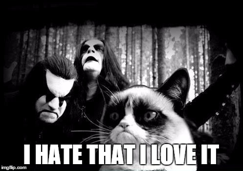 metal angry cat | I HATE THAT I LOVE IT | image tagged in metal angry cat | made w/ Imgflip meme maker