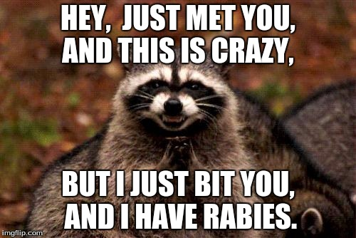 Evil Plotting Raccoon Meme | HEY,  JUST MET YOU, AND THIS IS CRAZY, BUT I JUST BIT YOU, AND I HAVE RABIES. | image tagged in memes,evil plotting raccoon | made w/ Imgflip meme maker