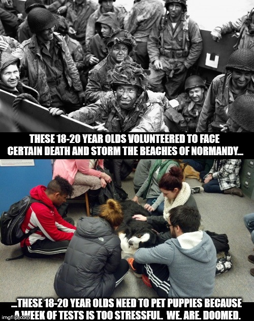 THESE 18-20 YEAR OLDS VOLUNTEERED TO FACE CERTAIN DEATH AND STORM THE BEACHES OF NORMANDY... ...THESE 18-20 YEAR OLDS NEED TO PET PUPPIES BE | image tagged in generation | made w/ Imgflip meme maker